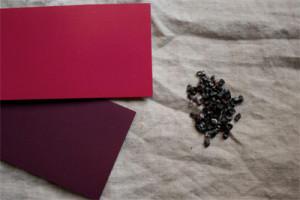草木染め コチニール(サボテンにつく介殻虫)/Cochineal