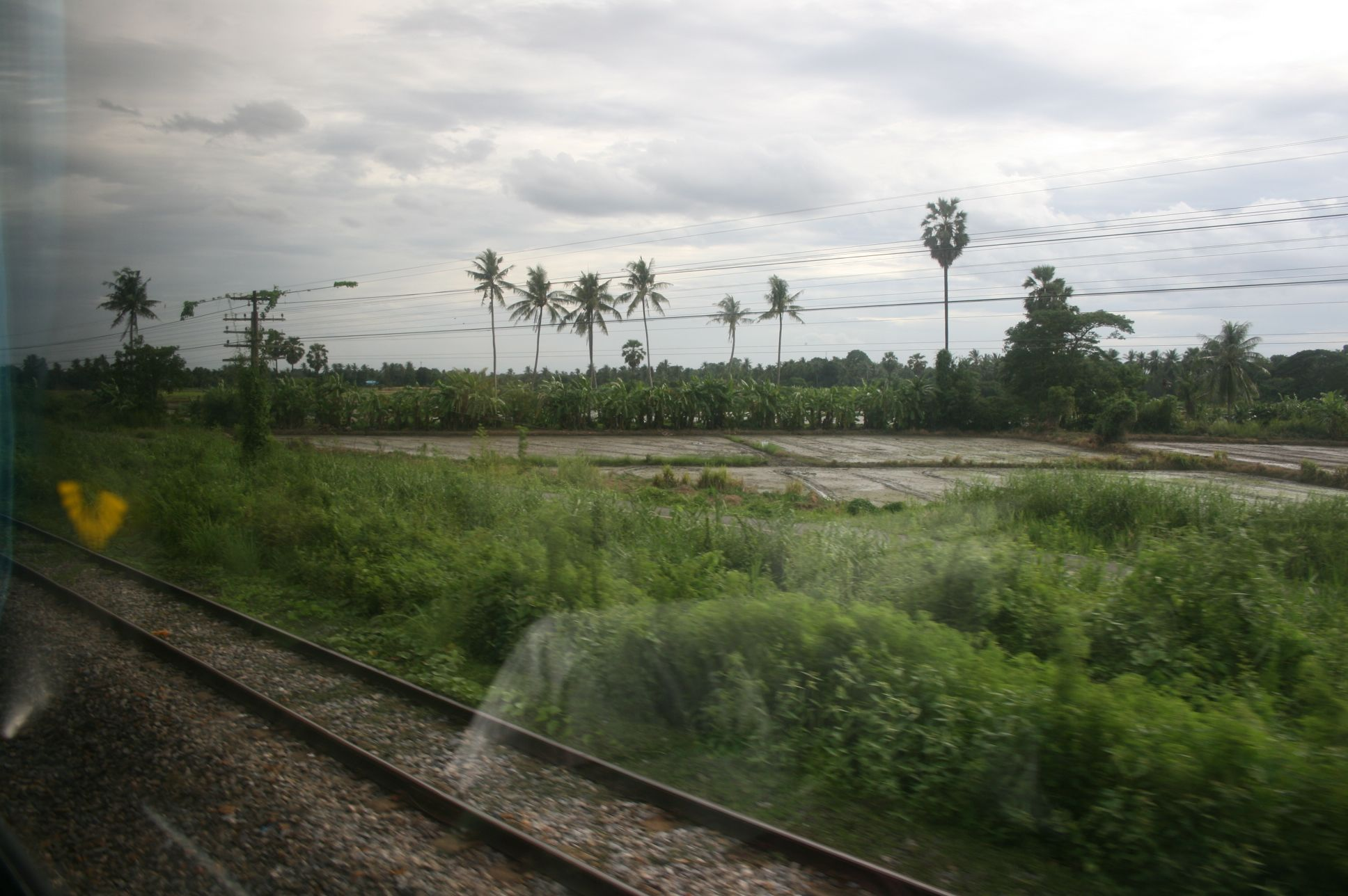 バンコクからペナンまで 車窓より train ride from Bangkok to Penang