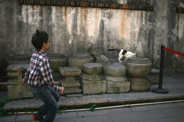 民俗博物館の中庭にて。やっぱり中国は石の文化ですね。