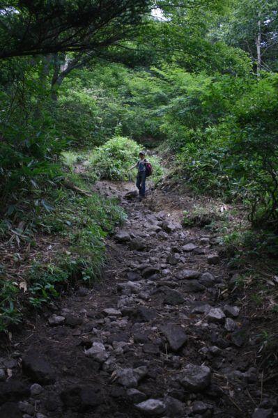 飯綱 帰り道。石ゴロゴロの道が続きます。