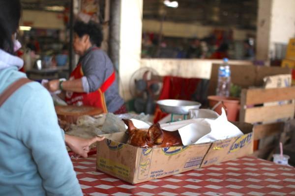 豚の丸焼き 朝市にて Dao Heuang Market (Morning Market) in Pakse